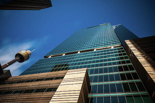 Reaching for the sky in Sydney by Daniela Constantinescu