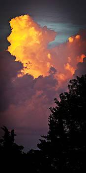 Reaching the Heavens by Laura Wiksten