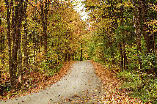 Reading Vermont backroad by Jeff Folger