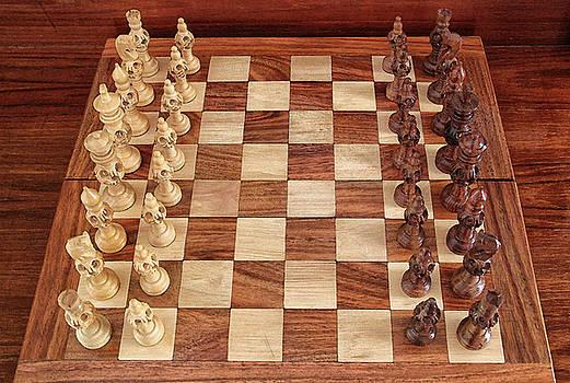 Ready for Battle by Sandeep Gangadharan