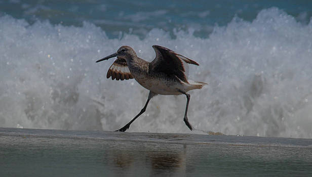 Ready for Takeoff by Debbie Morris