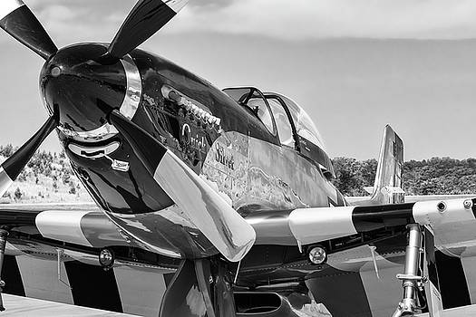 Ready for the Fight - 2018 Christopher Buff, www.Aviationbuff.com by Chris Buff