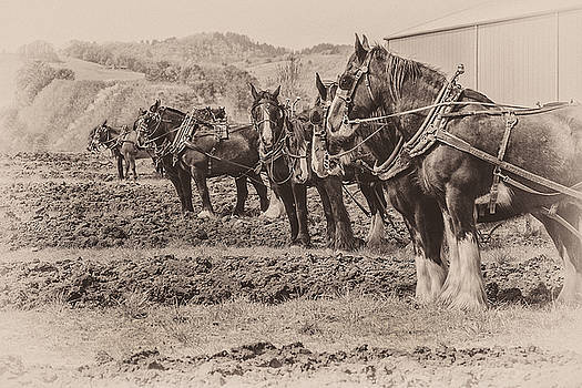 Ready to Plow by Joe Hudspeth