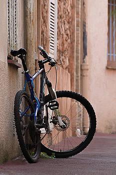 Ready to Ride by Su Buehler