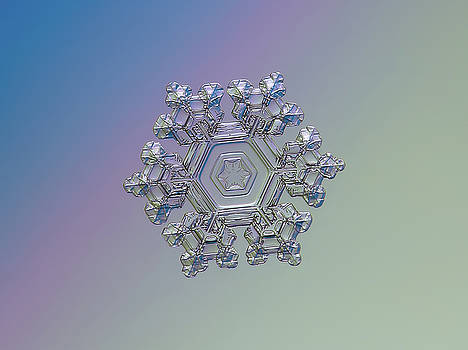 Real snowflake - 05-Feb-2018 - 1 alt by Alexey Kljatov