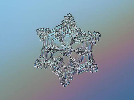 Real snowflake - 05-Feb-2018 - 8 by Alexey Kljatov
