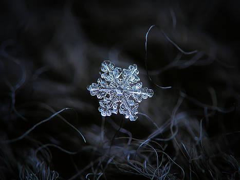 Real snowflake - 2017-12-07 1 by Alexey Kljatov