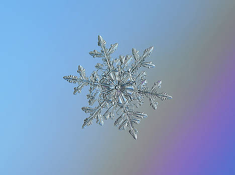 Real snowflake - 21-Feb-2018 - 1 by Alexey Kljatov