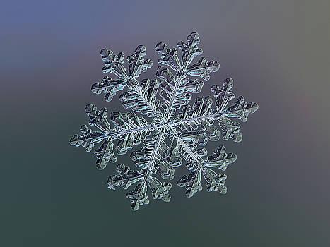 Real snowflake - Hyperion dark by Alexey Kljatov