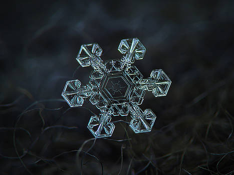 Real snowflake - Ice crown new by Alexey Kljatov