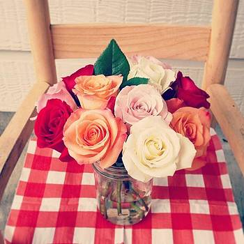 Rearranged Fresh Roses Today #roses by Sophia Perez