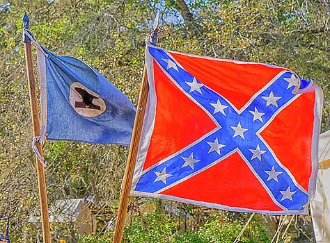 Rebal Flag by Dennis Dugan