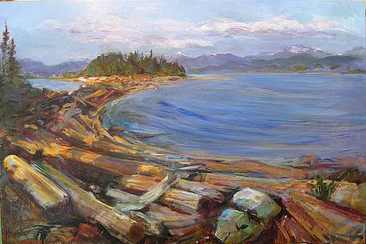 Rebecca Spit Driftwood by Nanci Cook