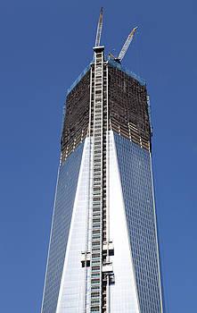 Ramunas Bruzas - Rebuilding New York