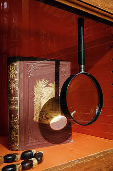 Recipe for Disaster At The Museum by Mary Lee Dereske