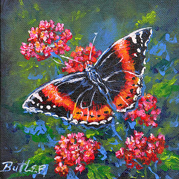 Red Admiral by Gail Butler