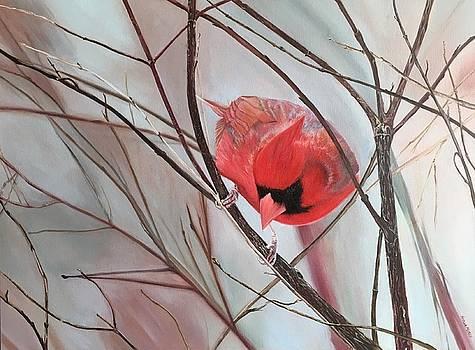 Red Alert by Stella Marin