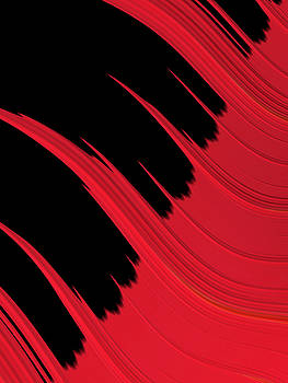 Bill Owen - Red and Black 036