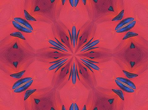 Red and Blue by Elizabeth Lock