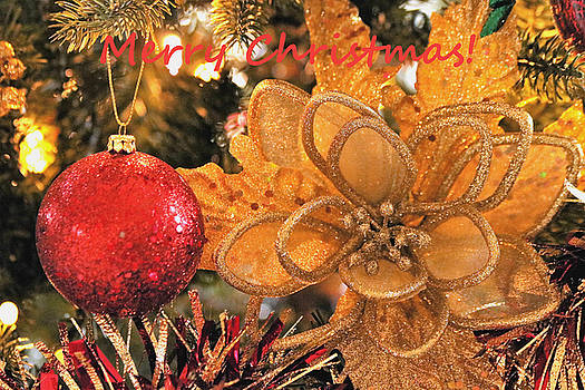 Red and Gold Christmas Ornaments by Sheila Brown