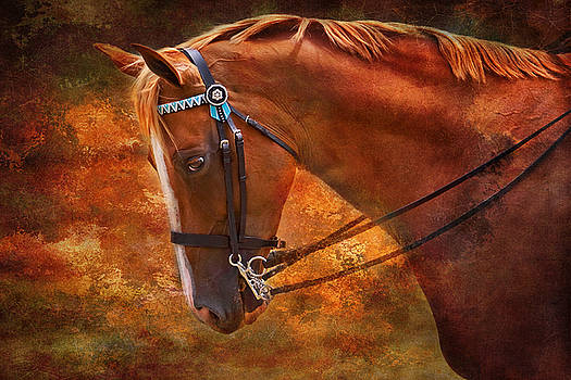 Michelle Wrighton - Red and Gold - Horse art by Michelle Wrighton