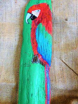 Red and Green Macaw  by Ann Michelle Swadener