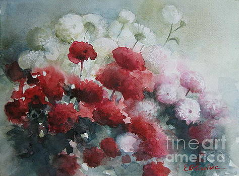 Red and white flowers by Elena Oleniuc