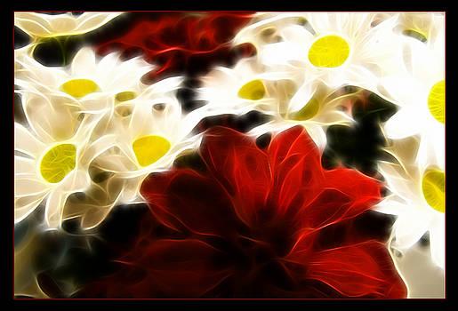 Ricky Barnard - Red and White
