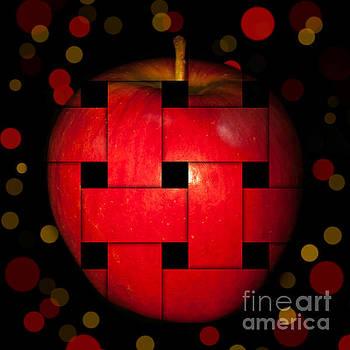Red Apple  by Barbara Dudzinska