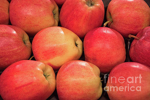 Red Apples by Andrew Michael