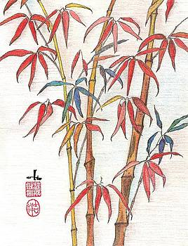 Red Bamboo by Irina Davis
