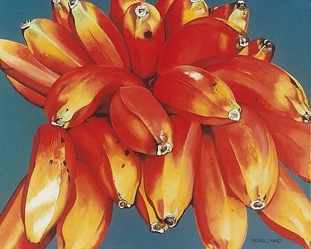 Michael Earney - Red Bananas of Jocotepec