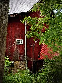 Red Barn 1 by Scott Fracasso