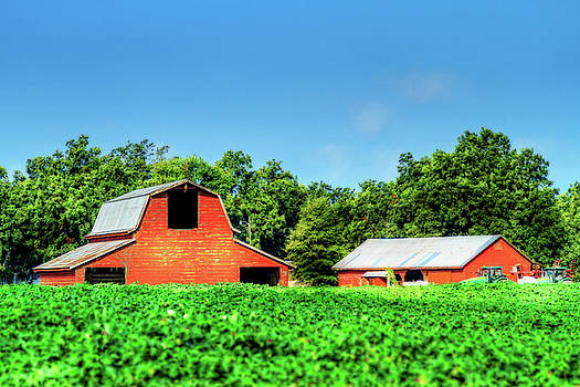 Red Barn and Shed by Barry Jones