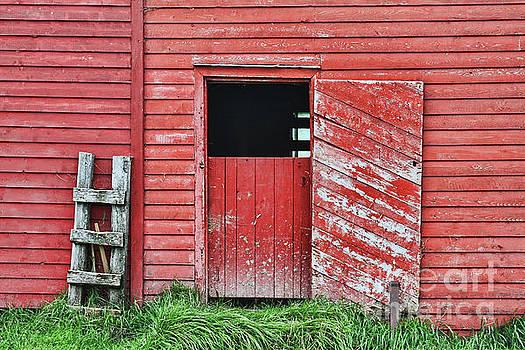 Tatiana Travelways - Red barn door