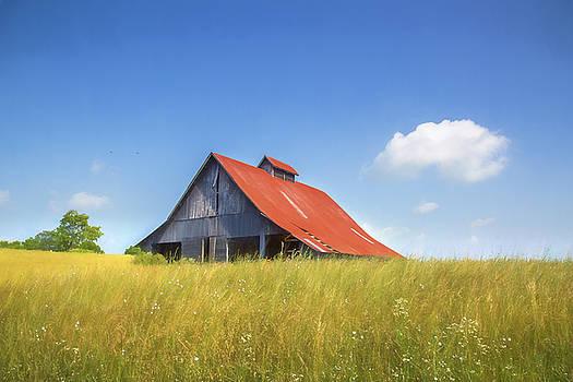 Red Roof Barn by Greg Grupenhof