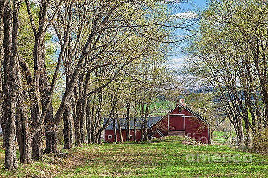 Red Barn In Early Spring by Alan L Graham