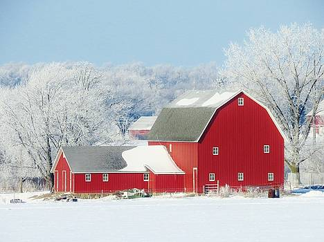 Red Barn In Winter by Lori Frisch