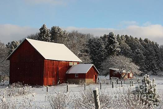 Red Barn in Winter by Teresa McGill