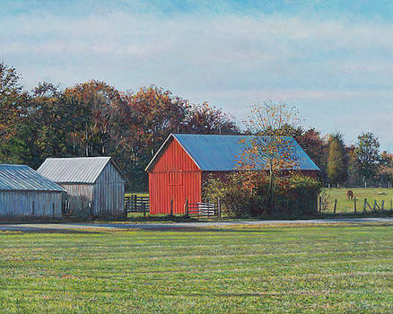 Red Barn off Colton Point Rd. by David P Zippi