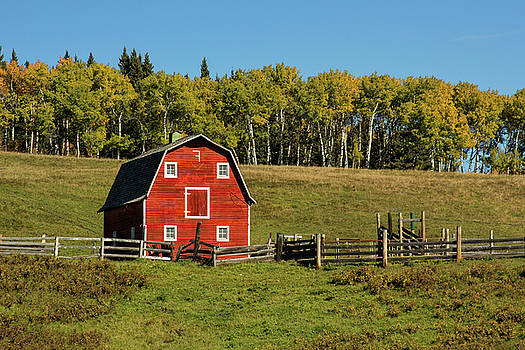 Red barn on the hill by Celine Pollard