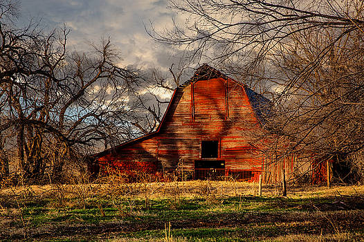 Red Barn - Old Barn Sits in Shadows of Trees on Warm Winter Day by Sean Ramsey