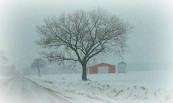 Red Barn by Sue Midlock