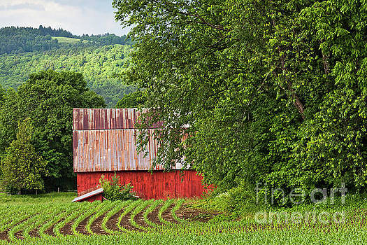 Red Barn Summer Scenic by Alan L Graham