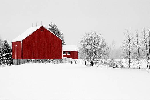 Red Barn Winter Landscape by Cathy Beharriell