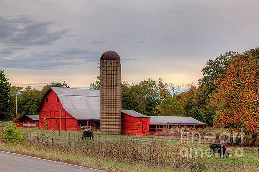 Larry Braun - Red Barn with Cows