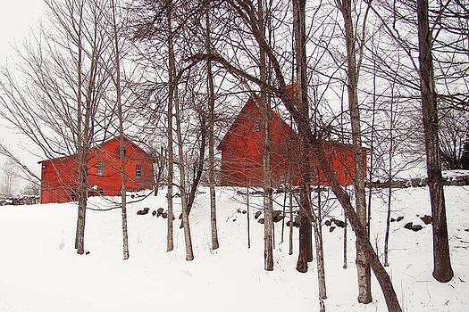 Red Barns by Betsy Zimmerli