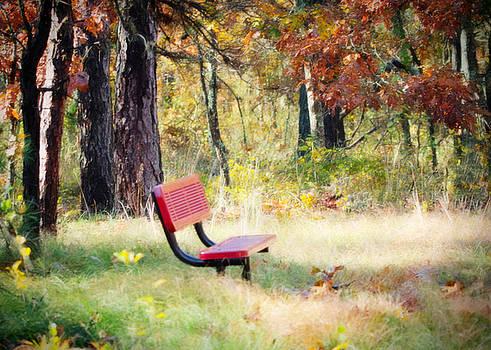 Red Bench at Wertheim by Vicki Jauron