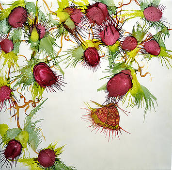 Red Berries and Butterfly by Jennifer Creech