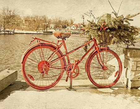 Garvin Hunter - Red Bicycle